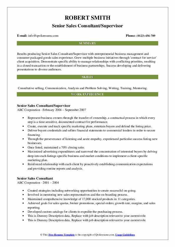 Senior Sales Consultant/Supervisor Resume Example