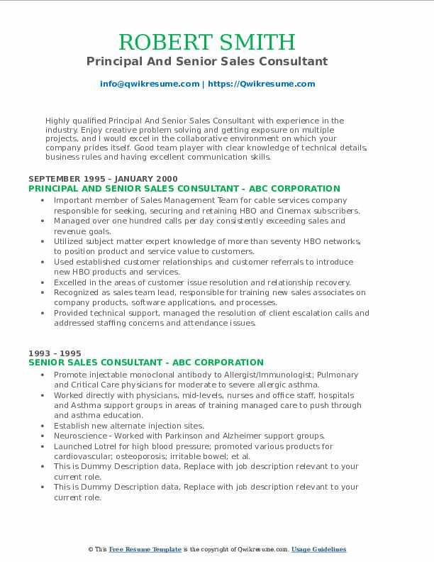 Principal And Senior Sales Consultant Resume Sample