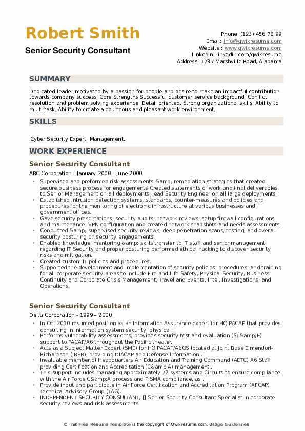 Senior Security Consultant Resume example