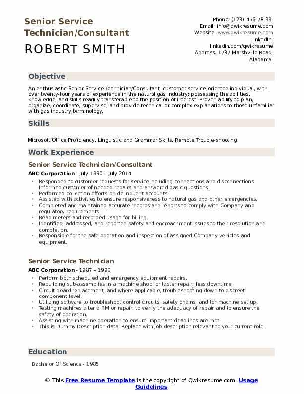 Senior Service Technician/Consultant Resume Format