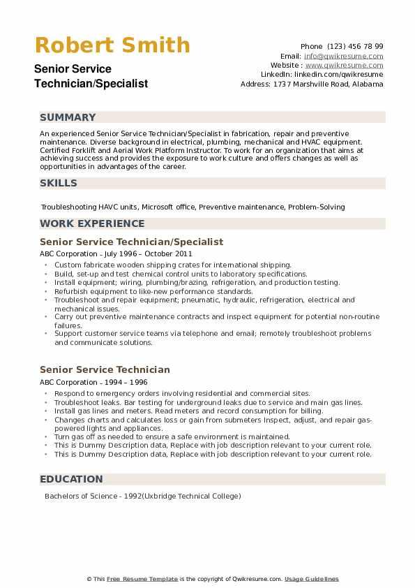 Senior Service Technician Resume example