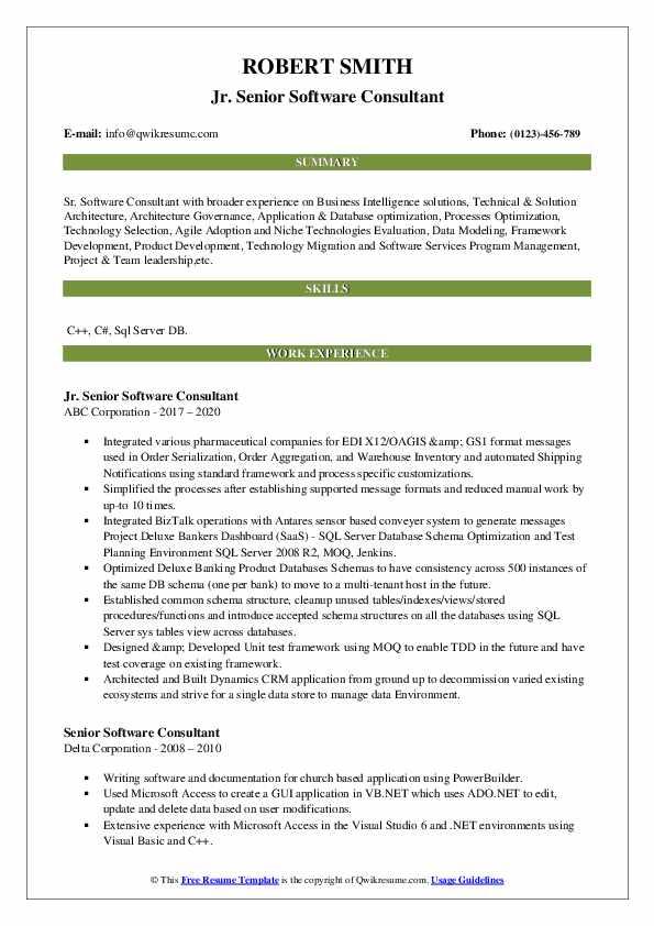 senior software consultant resume samples