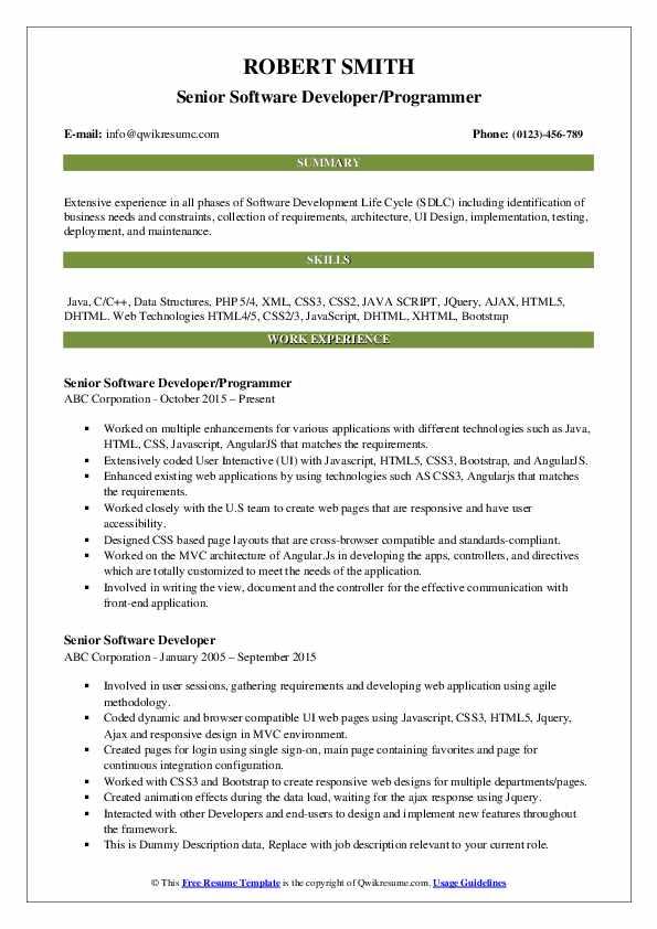 Senior Software Developer/Programmer Resume Model
