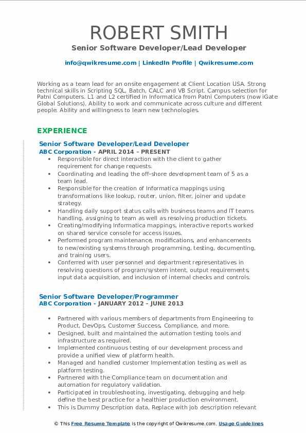 Senior Software Developer/Lead Developer Resume Template