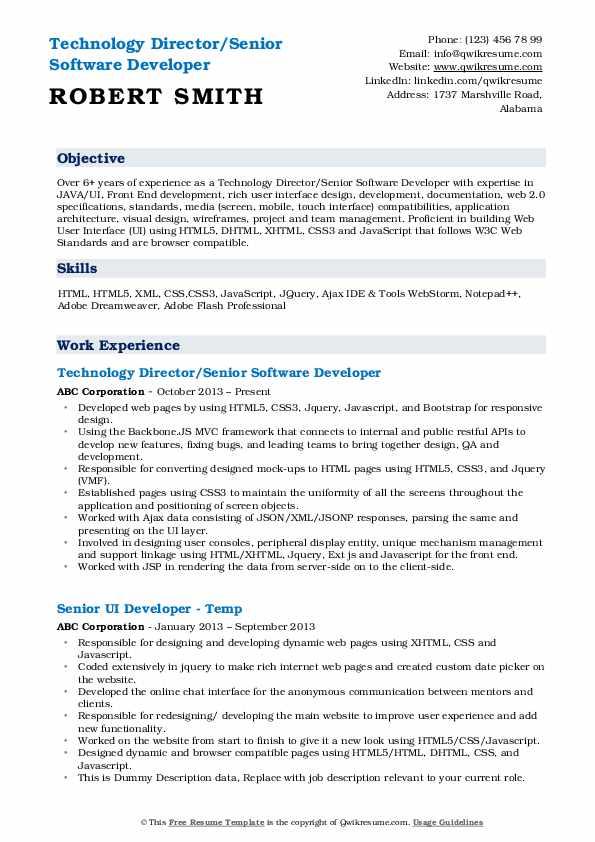 Technology Director/Senior Software Developer Resume Model