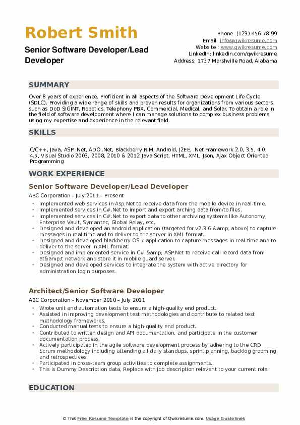 Senior Software Developer Resume example