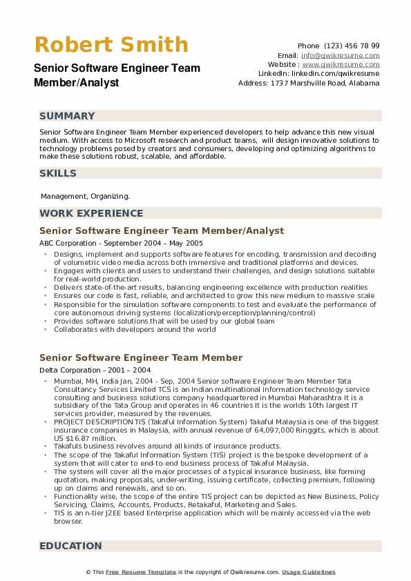 Senior Software Engineer Team Member Resume example
