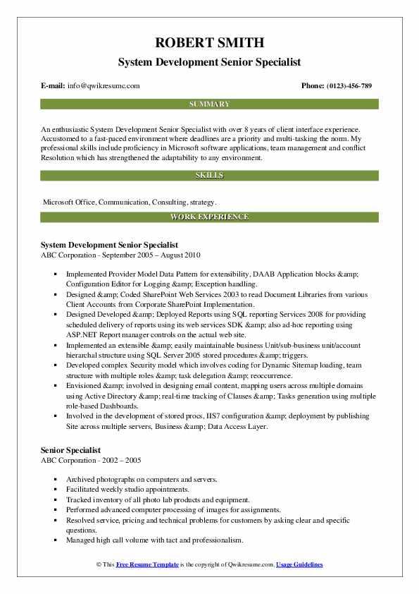 System Development Senior Specialist Resume Model