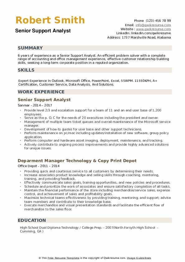 Senior Support Analyst Resume example