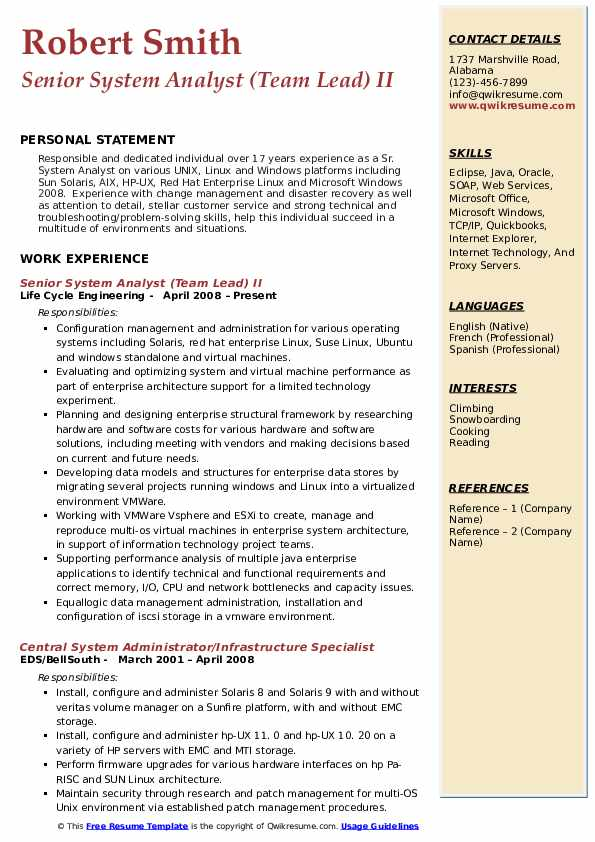Senior System Analyst (Team Lead) II Resume Format