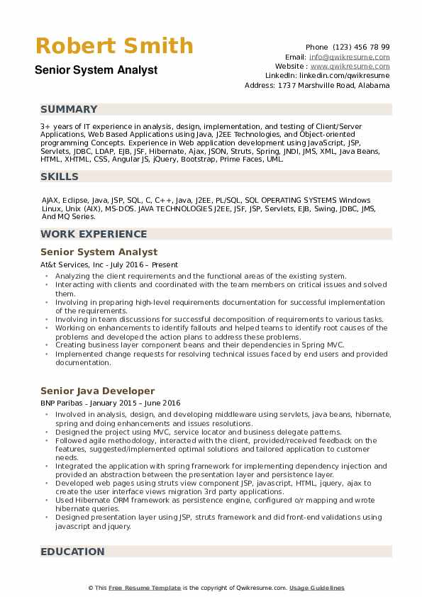 Senior System Analyst Resume example