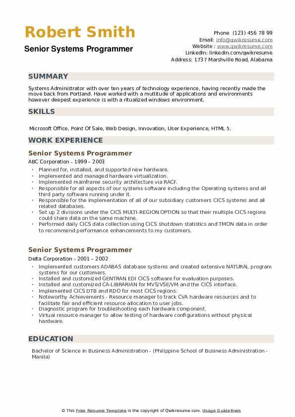 Senior Systems Programmer Resume example