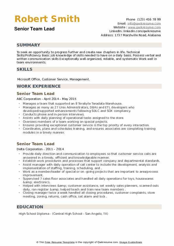 Senior Team Lead Resume example