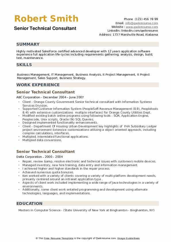 Senior Technical Consultant Resume example