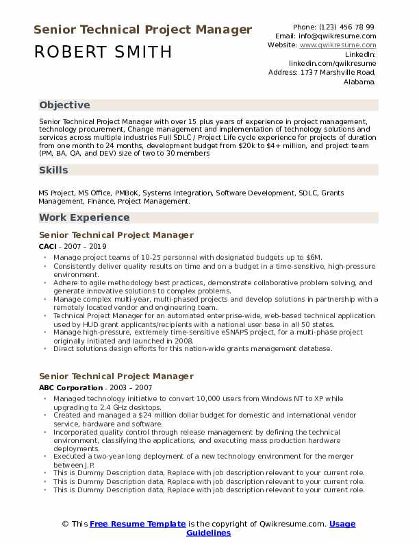 Senior Technical Project Manager Resume example