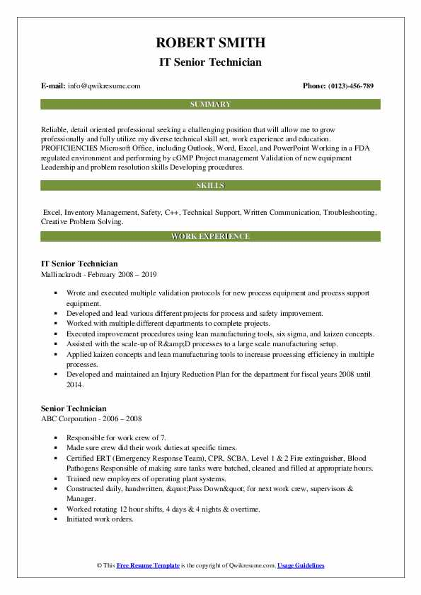 IT Senior Technician Resume Format