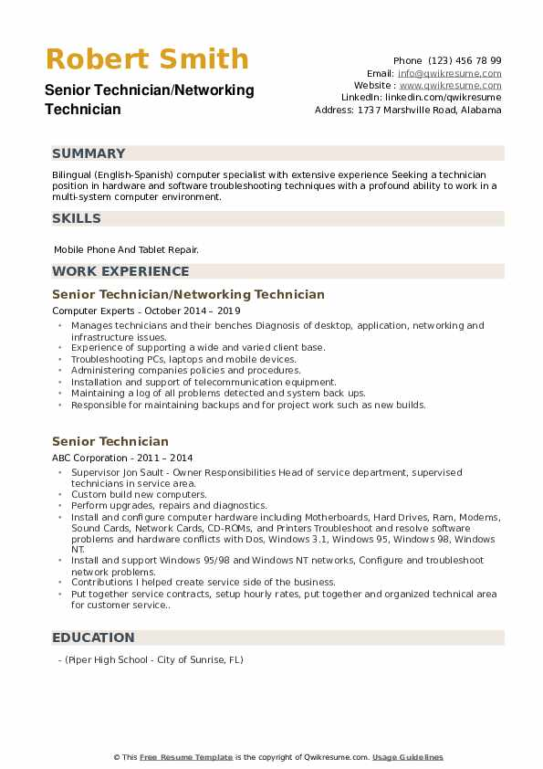 Senior Technician/Networking Technician Resume Template