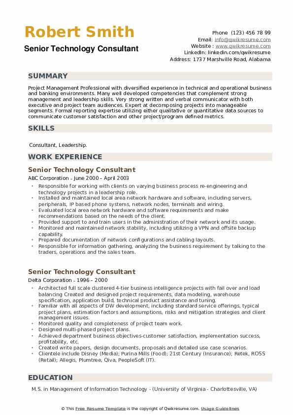 Senior Technology Consultant Resume example