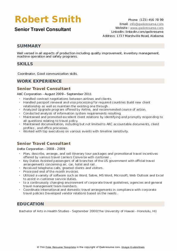Senior Travel Consultant Resume example