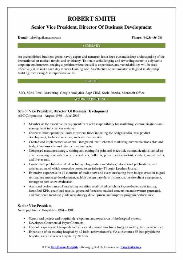 Senior Vice President, Director Of Business Development Resume Model