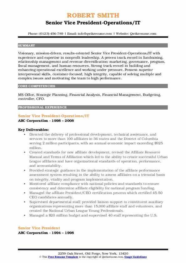Senior Vice President-Operations/IT Resume Model
