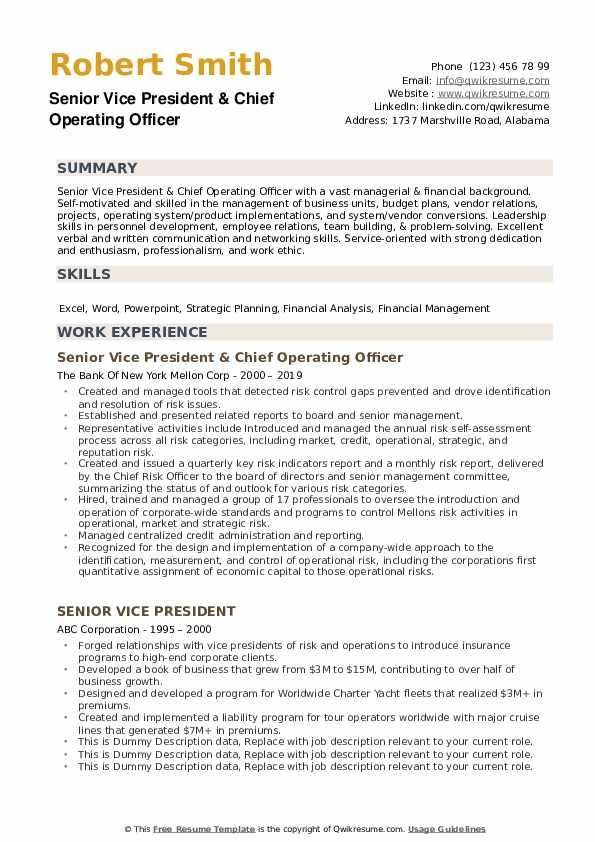 Senior Vice President Resume example