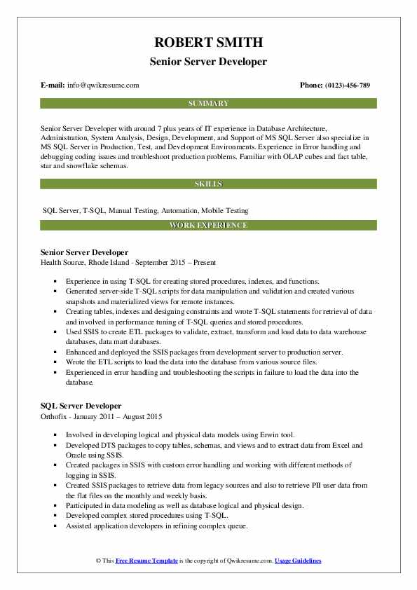 Senior Server Developer Resume Model