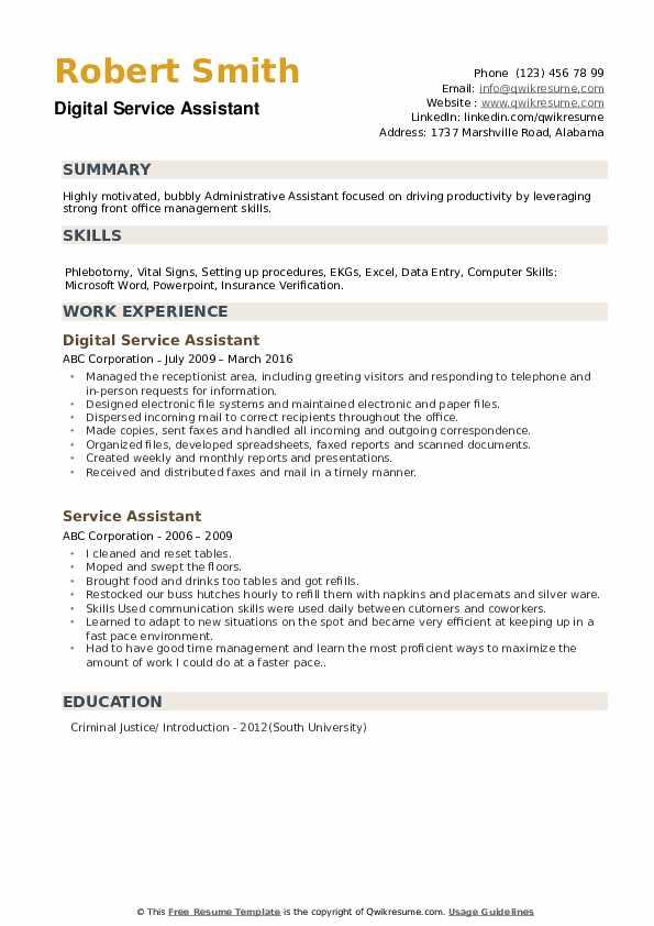 Digital Service Assistant Resume Sample