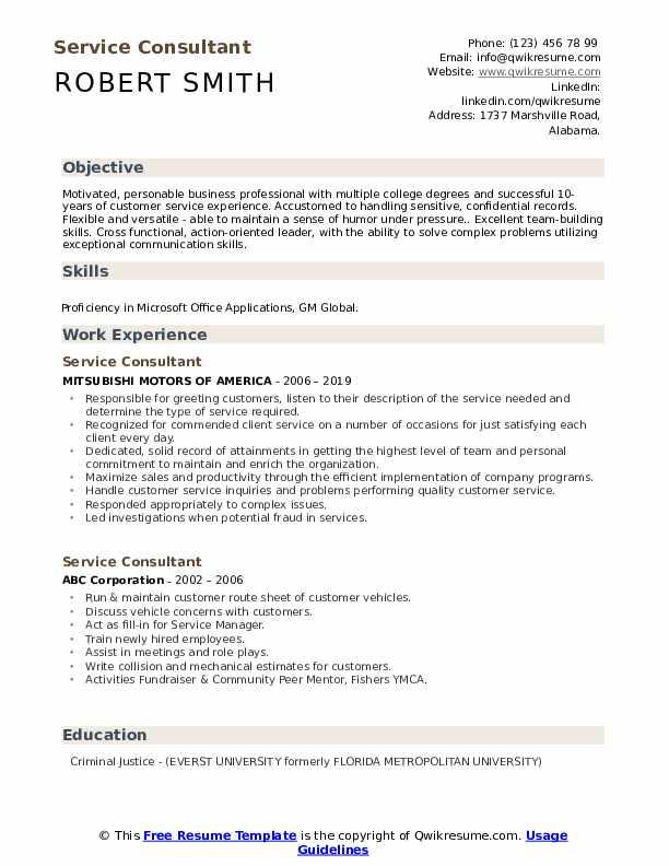 Service Consultant Resume Model