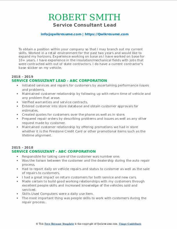 Service Consultant Lead Resume Example