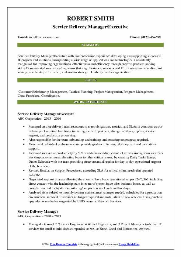 Service Delivery Manager/Executive Resume Template