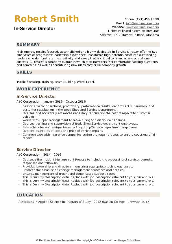 Service Director Resume example