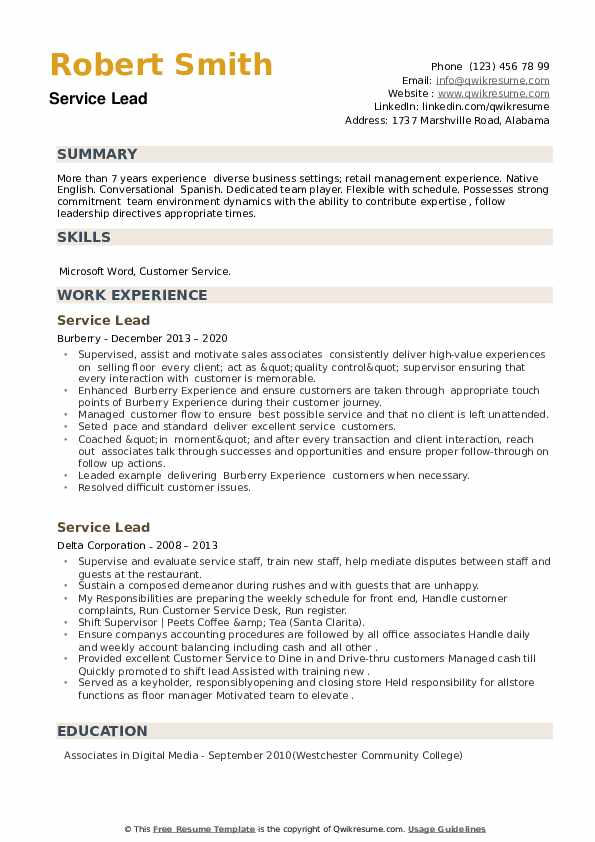 Service Lead Resume example