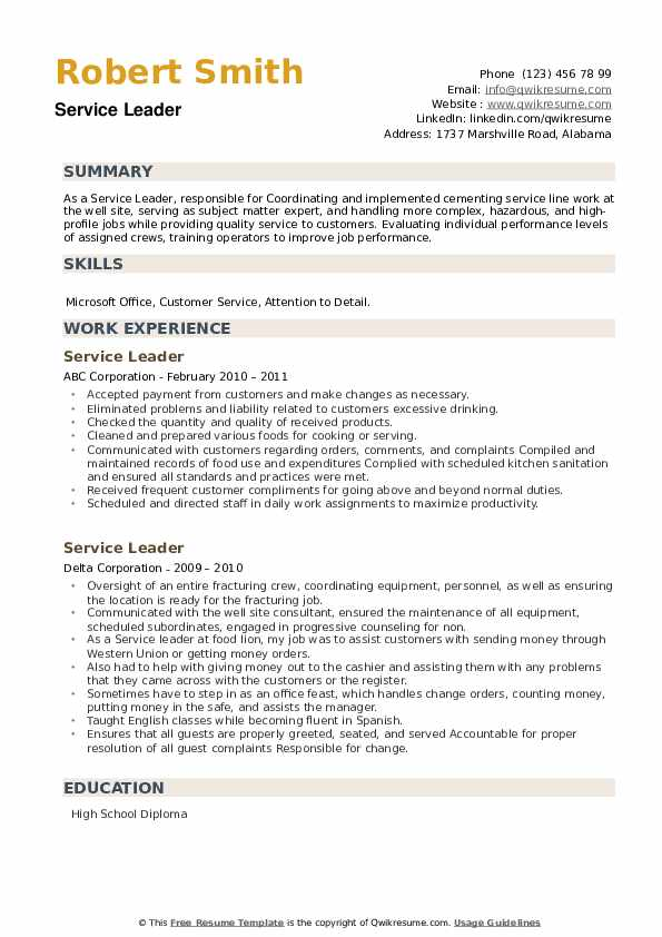 Service Leader Resume example