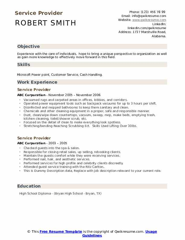 Service Provider Resume example
