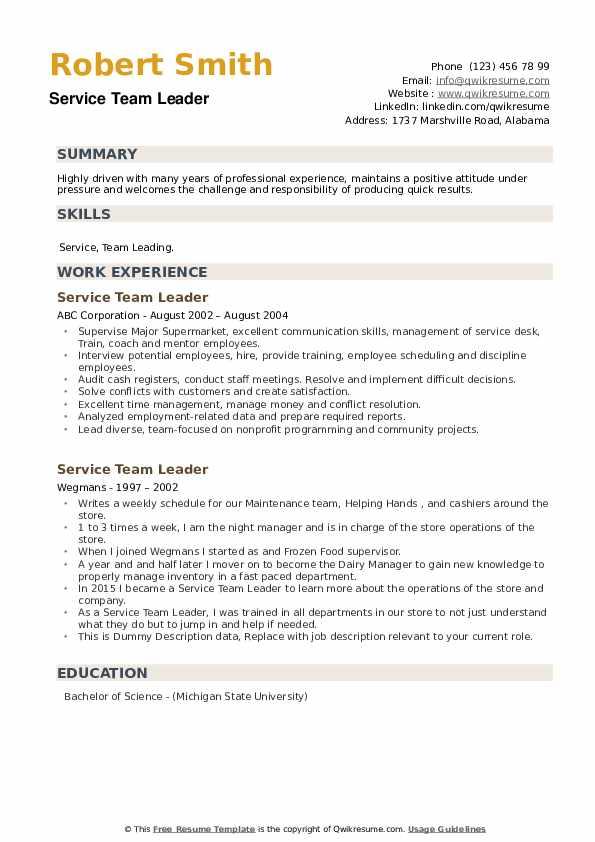 Service Team Leader Resume example