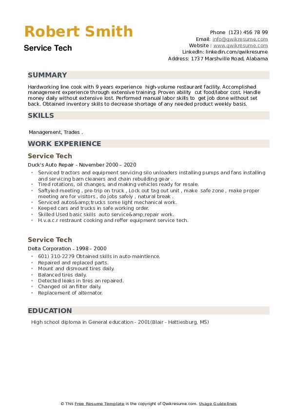 Service Tech Resume example