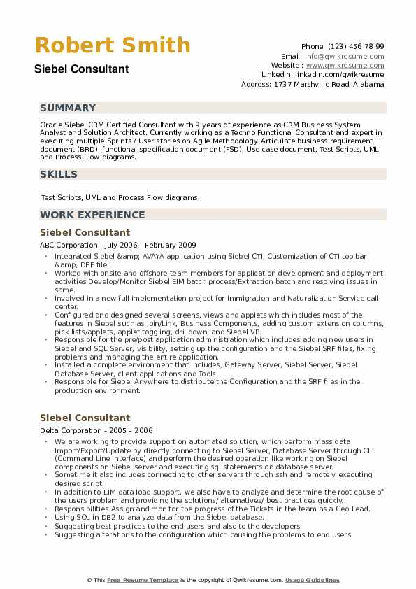 Siebel Consultant Resume example