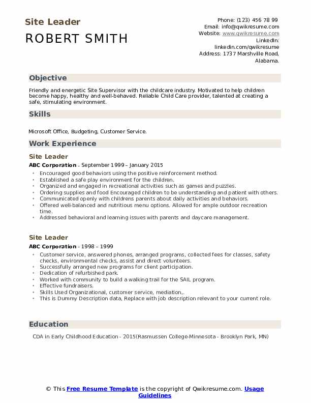 Site Leader Resume example