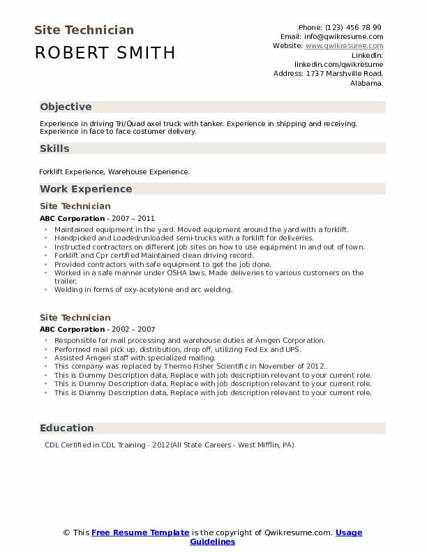 Site Technician Resume example