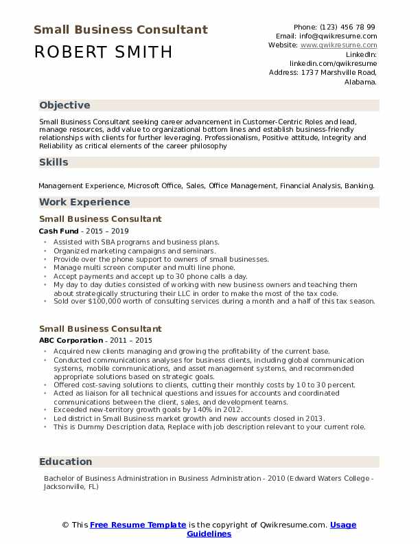 Small Business Consultant Resume example