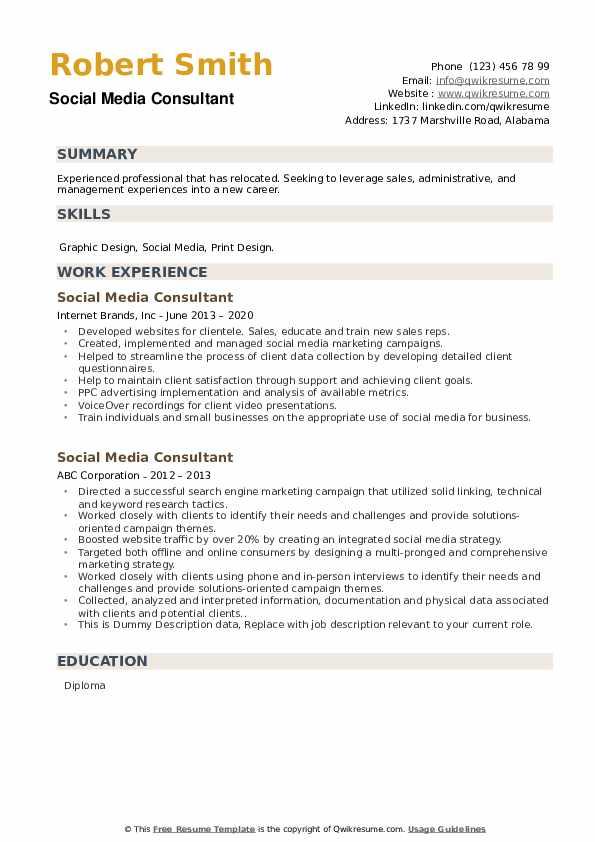 Social Media Consultant Resume example