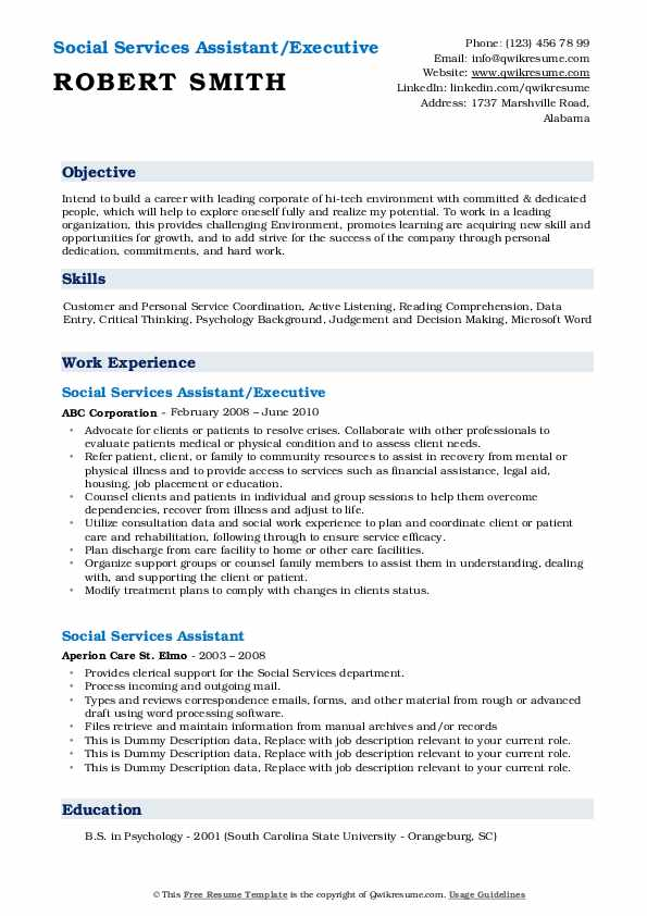 Social Services Assistant/Executive Resume Example