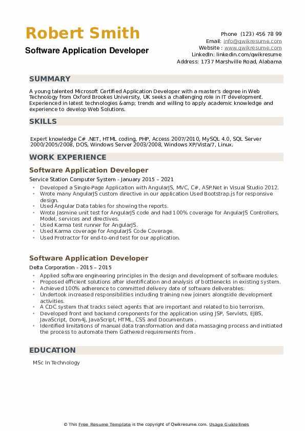 Software Application Developer Resume example
