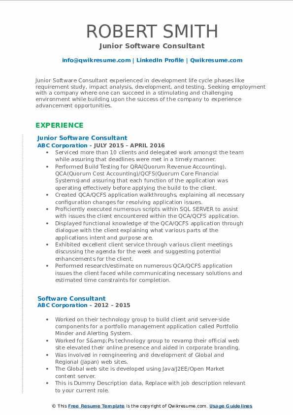 Junior Software Consultant Resume Format