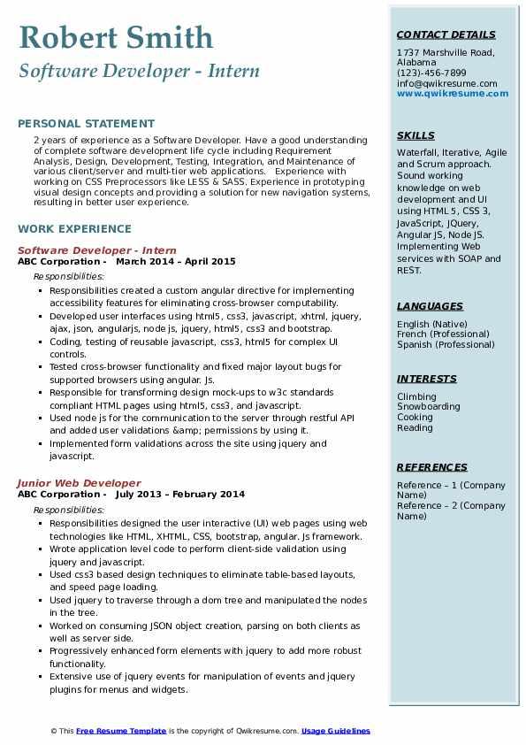 Software Developer - Intern Resume Sample
