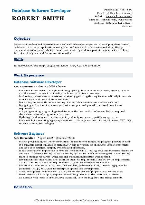 Database Software Developer Resume Format