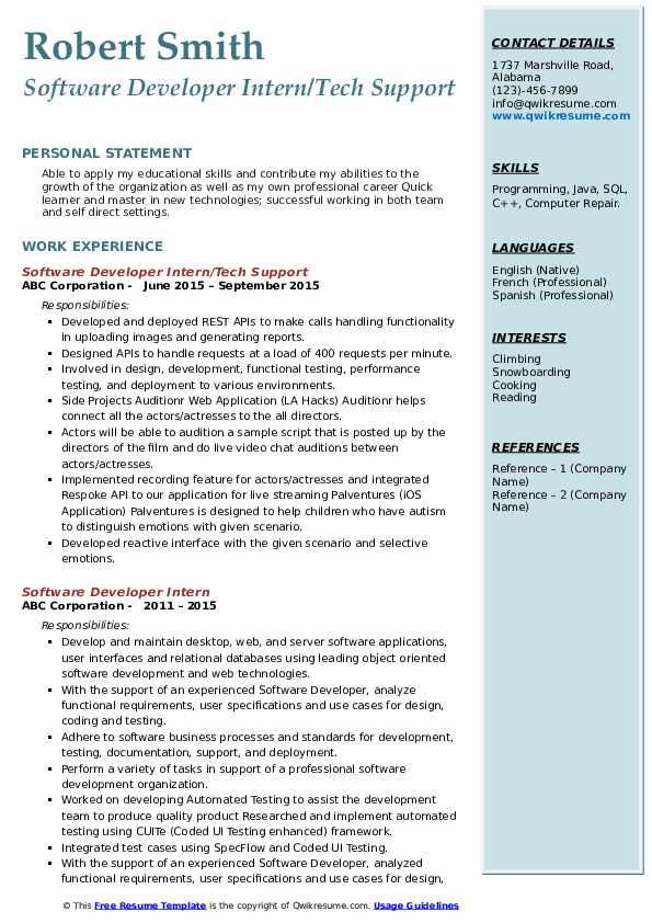 Software Developer Intern/Tech Support Resume Model