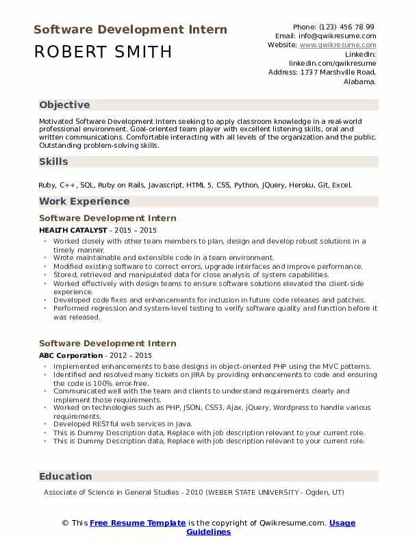 Software Development Intern Resume example