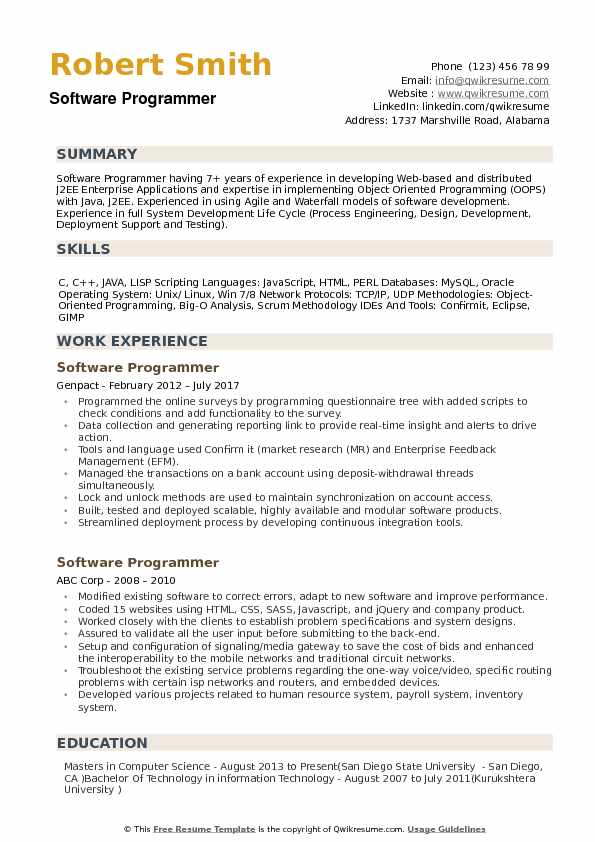 Software Programmer Resume example